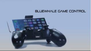 bluewhale.png
