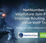 NetNumber and Voipfuture Partner to Improve VoIP Routing
